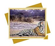 Ranthambore National Park, Travel to Ranthambore National Park, Animals wildlife and heritage of Rajasthan