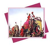 Elephant Festival, Elephant Festival travel, Elephant Festival of Rajasthan, Fair and Festival of Rajasthan, Rajasthan
