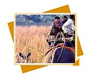 Kishanpur Sanctuary, Travel to Kishanpur Sanctuary, Animals wildlife and heritage of Uttar Pradesh, Wildlife Sanctuary